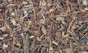 How to Get Rid of Termites: Destroy Wooden Mulch