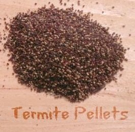 Signs of Termites: Brown Pellets of Eexcrement